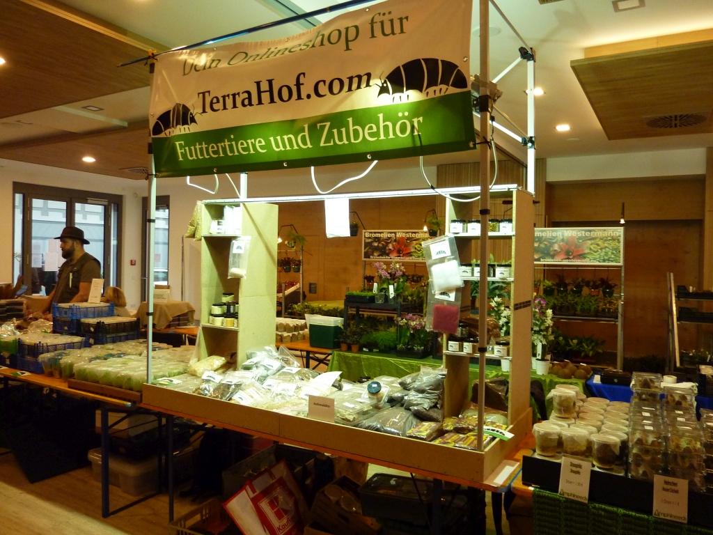Terrahof, Dominik Hoffges